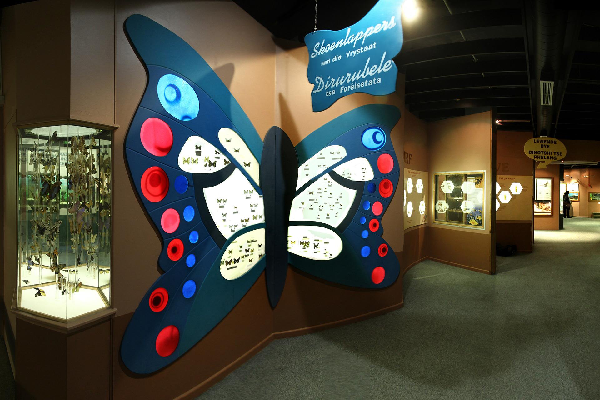 Invertebrates-banner