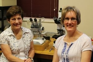 Acarologists appointed as Research Associates
