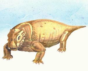 Palaeontology-Department