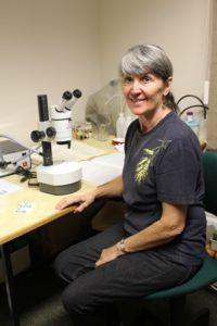 Researchers visit Entomology Department Maureen