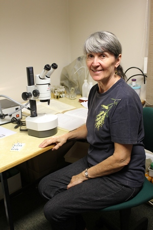Researchers visit Entomology Department Maureen
